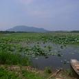 ■角田山を望む