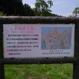 ■公園の概要 その2