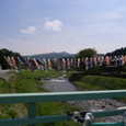■藤沢川の中束橋から眺める