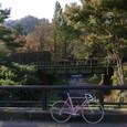 ■鉄橋を眺めて