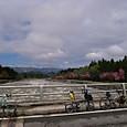 ■県道235沢口橋にて