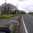 ■茨城県西端の結城市にて